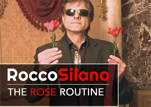 The Rose Routine by Rocco